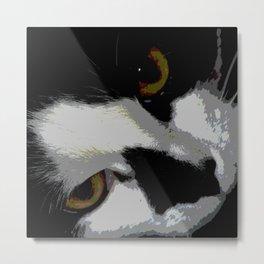 Black white cat Metal Print