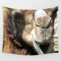 camel Wall Tapestries featuring camel by Laura Grove