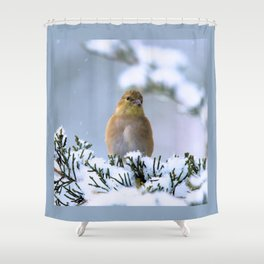Is This Heaven? (American Goldfinch) Shower Curtain