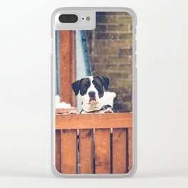 Curious Doggie Clear iPhone Case