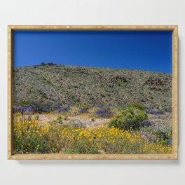 Painted Desert 7481 - Joshua_Tree National Park Serving Tray