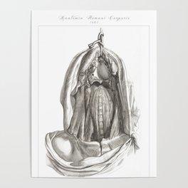 Human Anatomy Art Print ESOPHAGUS THROAT NECK Vintage Anatomy, doctor medical art, Antique Book Plat Poster