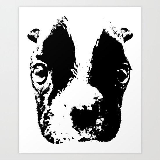 Curious French Bulldog Art Print