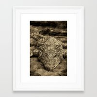 crocodile Framed Art Prints featuring Crocodile by Design Windmill