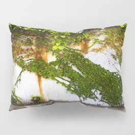 Impermanence #2  Pillow Sham