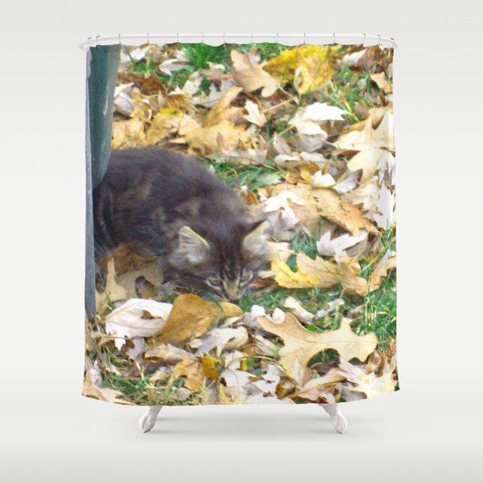 Autumn Kitten Shower Curtain By Jnccreations
