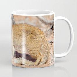 Yellow mongoose Coffee Mug