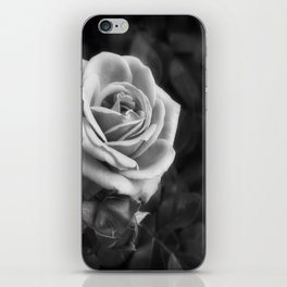 Pink Roses in Anzures 1 B&W iPhone Skin