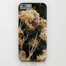 Wonderland iPhone 6s Slim Case