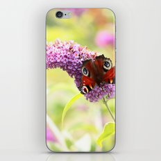 pastel peacock (butterfly) iPhone & iPod Skin