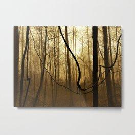 Foggy Appalachian Wilderness Metal Print