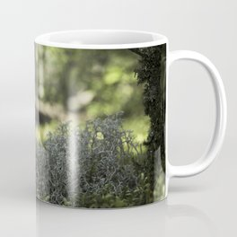 Mountain Forest Floor Coffee Mug