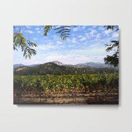 Your Backyard Vineyard Metal Print