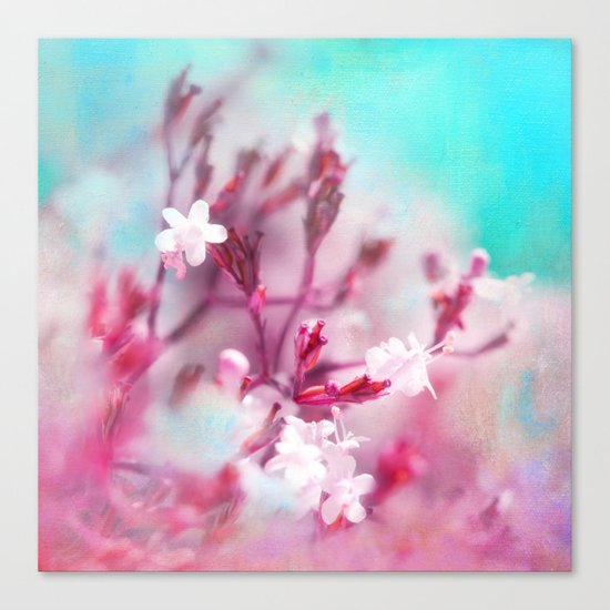 WHITE MACRO FLOWERS Canvas Print