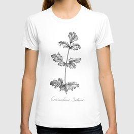Cilantro Botanical Illustration T-shirt