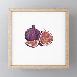 Fig Illustration  Framed Mini Art Print