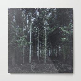 darkwood Metal Print