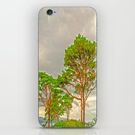 Magestic old Trees iPhone Skin