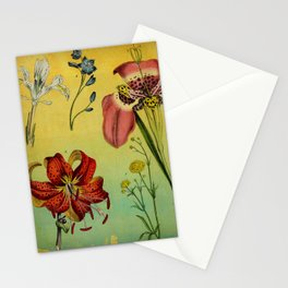Lily & Iris Stationery Cards