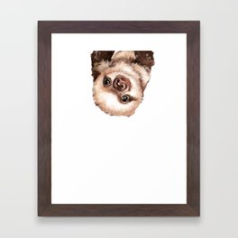 Baby Sloth Framed Art Print
