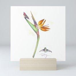 Anna's Humming Birds of Paradise (Strelitzia Reginea) Mini Art Print