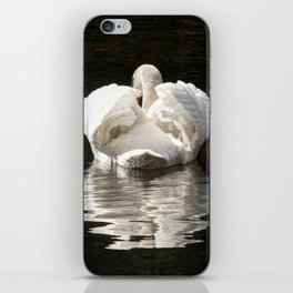 Swans wings wide open iPhone Skin