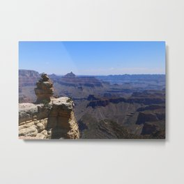 Duck On A Rock - A Scenic Grand Canyon View Metal Print