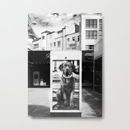 Urban City Dog Metal Print