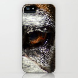 Boxer Stare Down iPhone Case