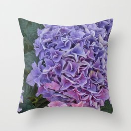 pink hydrangea in bloom Throw Pillow