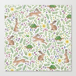 Spring Time Tortoises and Hares Canvas Print