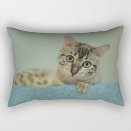 Cute Things Come in Kitty Packages Rectangular Pillow