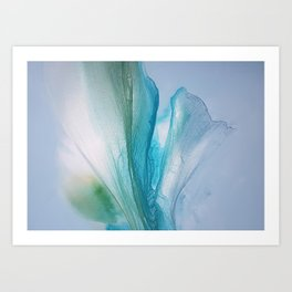 Natures Style Art Print