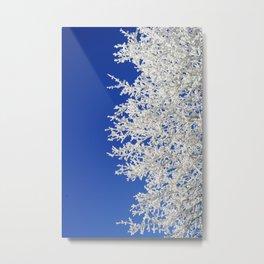 Frosty Tree Metal Print
