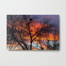Winter Tree Sunset Metal Print