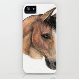 Horse head, equestrian, original art print iPhone Case