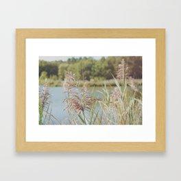 Les Landes (1) Framed Art Print
