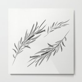 Eucalyptus leaves black and white Metal Print