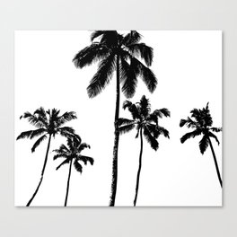 Monochrome tropical palms Canvas Print