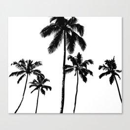 Monochrome tropical palms Canvas Print