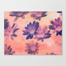 Daisies on Canvas Canvas Print