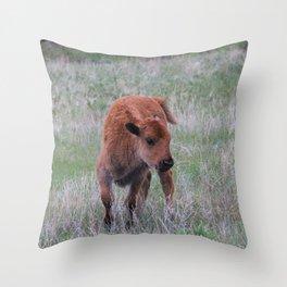 Baby buffalo calf Throw Pillow
