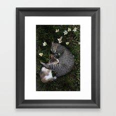 Sleep [A CAT AND A KITTEN] Framed Art Print