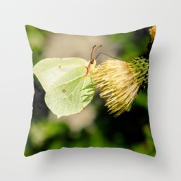 Butterfly or leaf Throw Pillow