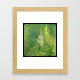 Anymore Framed Art Print