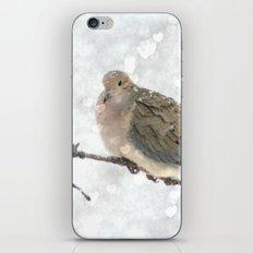 Snowy Winter Dove iPhone & iPod Skin