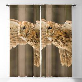 Tawny Owl in Flight Blackout Curtain
