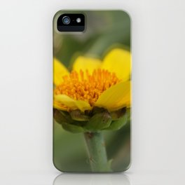 Care To Dance iPhone Case
