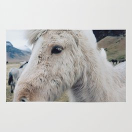 White Horse in Iceland Rug