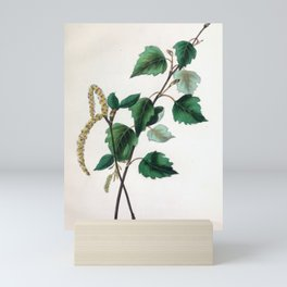 "The Birch, from ""The Spirit of the Woods,"" 1849 (benefiting the Arbor Day Foundation) Mini Art Print"